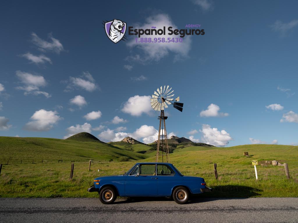 Univista Insurance: Cotiza Seguro de Auto